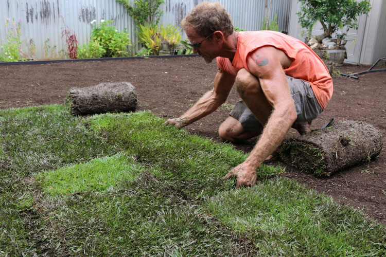 Install Sod Grass in a staggered fashion