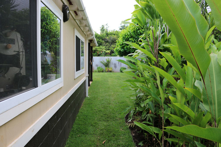 Over grown Heliconia plants are now replaced with a beautiful lawn.