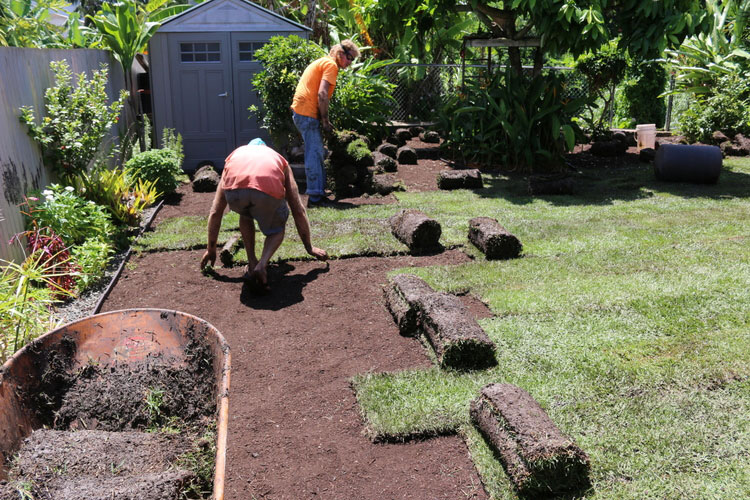 Sod Grass is easy to install due the professional preparation of the soil.