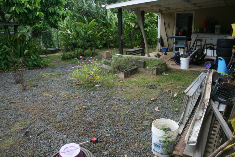 Before, the yard was filled with a lot of gravel